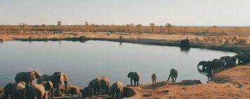 Minority Students in Study Abroad: Visiting Zimbabwe