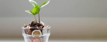 Coins and a growing plant
