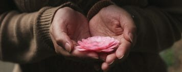 Empathy: Photo of two hands holding a flower