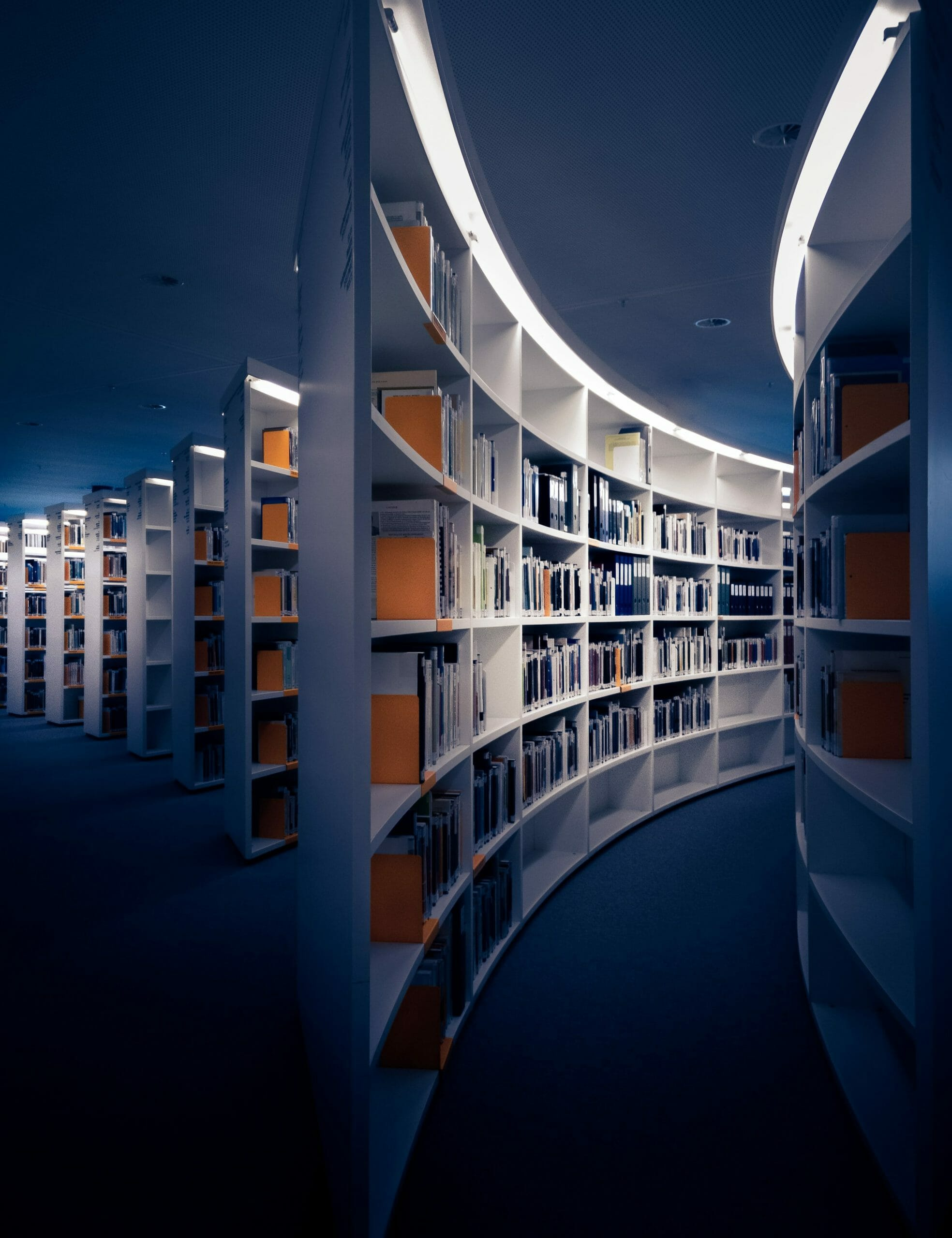 Gender Bias in the Academy - Image of an Academic Library