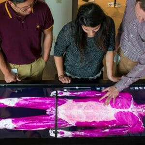 Studying a virtual body