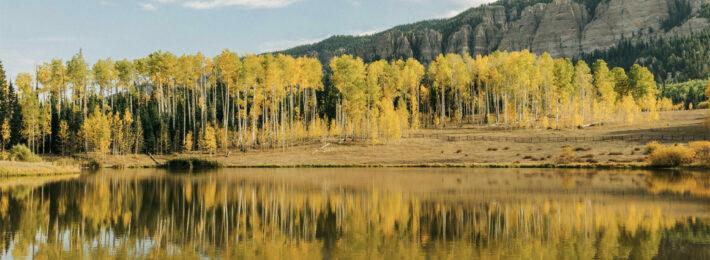 Landscape photo by Shawn Herbert